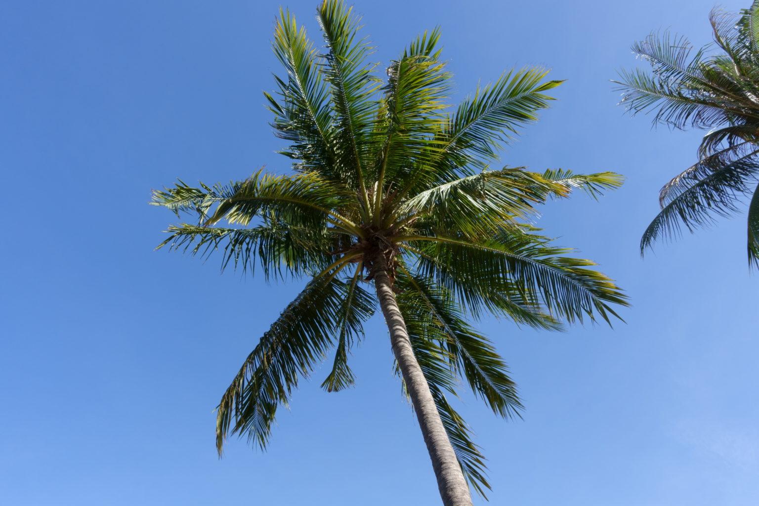 パタヤビーチの空